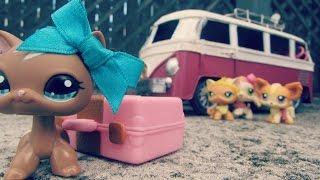 """getlinkyoutube.com-☼Littlest Pet Shop: Summer Camp (Season 1, Episode 1: """"Good Luck"""")☼"""