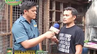 AGRITV - EXCELLENCE ALAGANG KALAPATIDS  SEASON 6 EP 67 JULY 5,2015