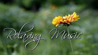 getlinkyoutube.com-Muzyka Relaksacyjna-uspokojenie umysłu i dusze