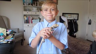 getlinkyoutube.com-😢SAD KID SAYS GOODBYE TO HIS PET🐊⚰ | BOYS PET LIZARD DIED | DYCHES FAM