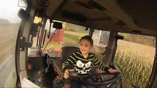 getlinkyoutube.com-Kevin allein im Fendt | mit 6 Jahren beim Maisabtransport | Klaus Fischer | Maissilieren 2016