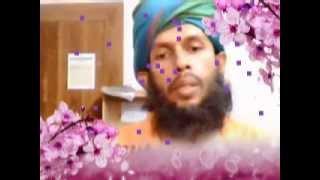 getlinkyoutube.com-Valeriana  Homeopathic  Materia  Medica  Lecture  Dr  Bashir  Mahmud  Ellias
