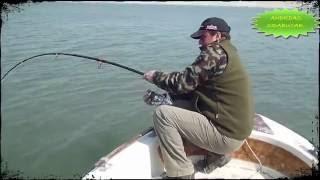 getlinkyoutube.com-mancing ikan lele terbesar di dunia