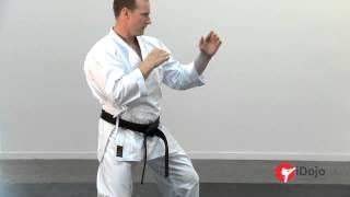 Karate - Power Punching Part 2