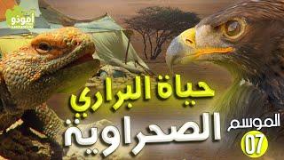 getlinkyoutube.com-AmouddouTV 108 أمودو/ حياة البراري الصحراوية