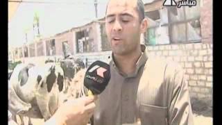 getlinkyoutube.com-صباح الخير يا مصر (2)  23-7-2012