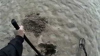 getlinkyoutube.com-Uscita con Garrett AT Gold Beach Italia Endriu Detector