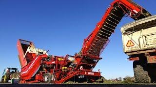 getlinkyoutube.com-Grimme field loading station CleanLoader / Feldverladestation   Celeriac Harvest   Novifarm