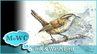 getlinkyoutube.com-Painting a Wren in Watercolor Line and Wash