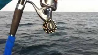 getlinkyoutube.com-ไต๋จ๋ายบันเทิงvsสัตว์ปิหลาดใต้น้ำ