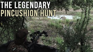 getlinkyoutube.com-Legendary Whitetail Deer Goes Down with Crossbow
