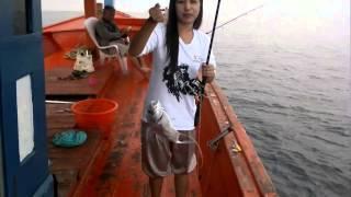 getlinkyoutube.com-ตกปลา  สตูล