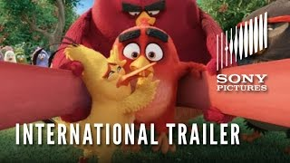 getlinkyoutube.com-THE ANGRY BIRDS MOVIE - Official International Trailer (HD)