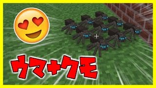 getlinkyoutube.com-【蜘蛛クラフト】 蜘蛛の女王になって世界を征服する#11【マインクラフト】
