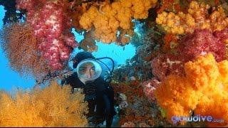 getlinkyoutube.com-Raja Ampat Reefs