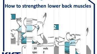 kkt jordan -low back exercises