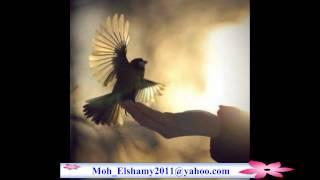 getlinkyoutube.com-محمد منير يا حمام بتنوح ليه