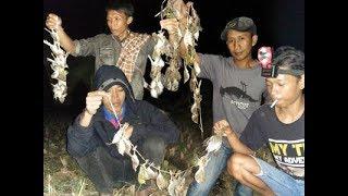 WOW TRIK berburu/menangkap burung malam hari dapat raTusan