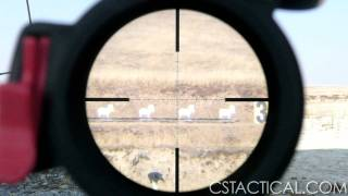 getlinkyoutube.com-Leupold Mark 4 6.5-20x50 w/M5 Turrets