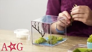 getlinkyoutube.com-DIY Teeny Terrarium Craft | American Girl