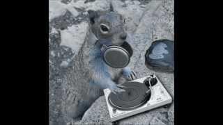 DJ LEO FT ARDILLA MIX TITO EL BAMBINO LAS NENAS DE PAPI  REMIX.wmv