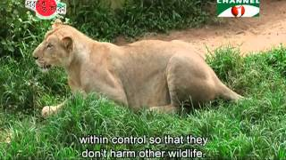 getlinkyoutube.com-Nature and Life   Episode 141 (Safari Park of Bangladesh)