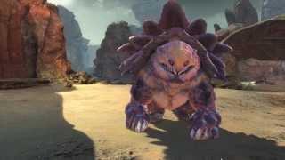 getlinkyoutube.com-GW2 HOT Godzilla Pet over 9000