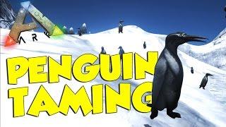 getlinkyoutube.com-ARK Survival Evolved Gameplay - Kairuku PENGUIN Taming and Breeding (How to Tame Penguins)