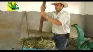getlinkyoutube.com-TIERRA PASTOS Y GANADO PROCESO DE SILO