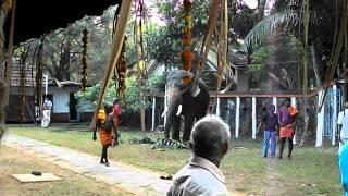 getlinkyoutube.com-Shree Dharma Shastha Temple- Poonjar Festival 2011 (Video 6)