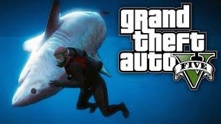 getlinkyoutube.com-GTA 5 - THE SHARK WHISPERER! (GTA V Shark Hunting)