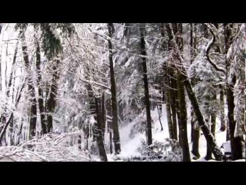 Neve Serra san bruno febbraio 2012 by gmandy