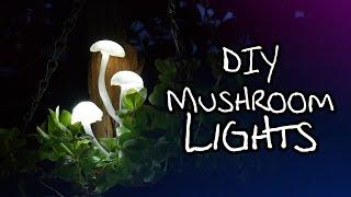 getlinkyoutube.com-Make Your Own Magical Mushroom Lights