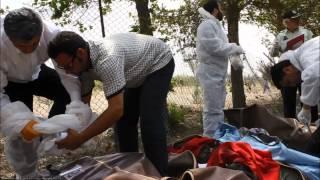 شب ویرونی / سقوط ایران ۱۴۰ سپاهان ایر با ۴۸ سرنشین در مسیر تهران - طبس