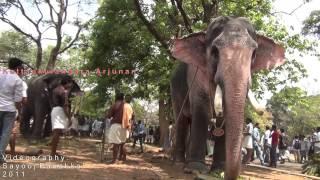 getlinkyoutube.com-Kuttankulangara arjunan