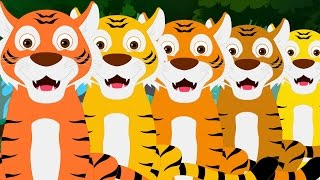 getlinkyoutube.com-Five Big Tigers | Tigers