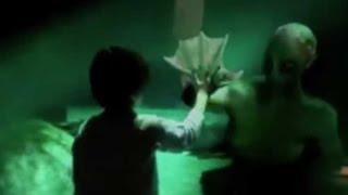 getlinkyoutube.com-SIRENA REAL INCREIBLE!! Grabada en un acuario a mar abierto