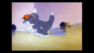 getlinkyoutube.com-Gritos de Tom & Jerry