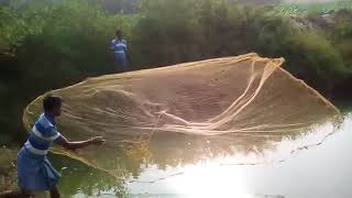 getlinkyoutube.com-Fish culture in India