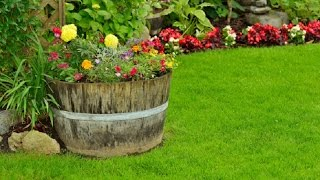 getlinkyoutube.com-Дизайн цветочных клумб на даче 30 потрясающих примеров дизайна клумб на даче