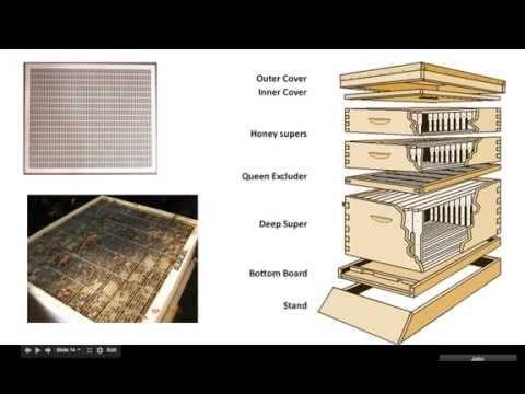 Basic Beekeeping 101 - Short Review