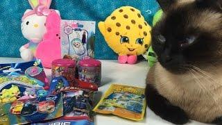 getlinkyoutube.com-Blind Bag Palooza Round 2 Frozen Spongebob WWE Dog Tags Shopkins Soft Spots LPS MLP Fashems Chibis U