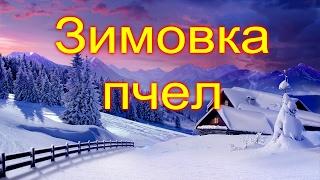 getlinkyoutube.com-Зимовка пчел & Как зимуют мои пчелки