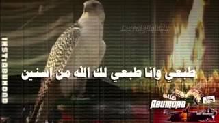 getlinkyoutube.com-شيلة حنا ماحنا يامحمد مقيمين