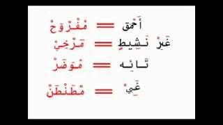 تعلم الدارجه المغربية بسهولة من اسامه رخا
