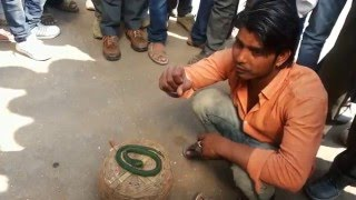 getlinkyoutube.com-magic from road side bikaner