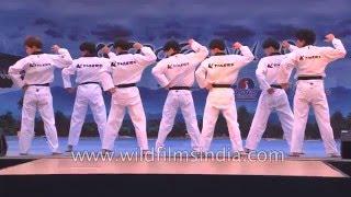 Taekwondo performance by K-Tigers from Korea width=