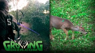 getlinkyoutube.com-Better Bow Hunting: Cold Front, Time to Hunt (#359) @GrowingDeer.tv
