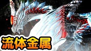 【MHF-Z実況】『ハルドメルグ』戦は閃光玉が有能すぎる!【流体金属】【モンハンフロンティアZ】
