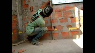 getlinkyoutube.com-SHOW DE MESTRE PAREDE RETA .MESTRAS DIFERENTE ALINHAMENTE E PLUMAGEM STRAIGHT WALL. DIFFERENT